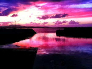pink-bay